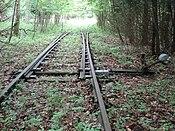 Weiche der ehemaligen Bahnstrecke Herzberg–Siebertal.jpg