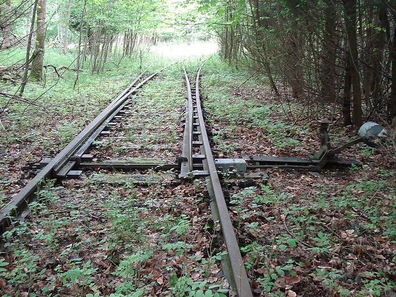 File:Weiche der ehemaligen Bahnstrecke Herzberg–Siebertal.jpg