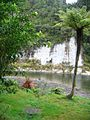 Whanganui-River-02.jpg