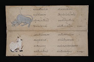 Thai cat - Thai cat in Tamra Maew (The Cat-Book Poems) thought to originate from the Ayutthaya Kingdom (1351 to 1767 AD). Over a dozen are now kept in the National Library of Thailand.