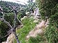 Widok z góry na dolinę - panoramio.jpg