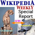 WikipediaWeekly Special 1.png
