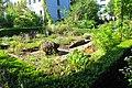 Wikipedia 13. Fotoworkshop Botanischer Garten Erlangen 2013 by-RaBoe 031.jpg