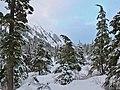 Winter (11897256314).jpg