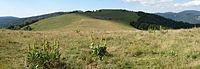 Wissgrutt vu du Tremontkopf juillet2011.JPG
