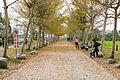 Wongwt 瑞穗牧場 (16572257448).jpg