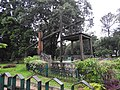 Wood chair art-2-cubbon park-bangalore-India.jpg