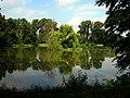 Wysepka na jeziorze w parku w Nieborowie.jpg