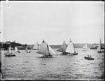 Yachting, Sydney Harbour (2514725441).jpg