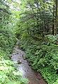 Yagasaki River - Karuizawa, Japan - DSC02014.JPG