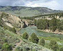 Il fiume Yellowstone nel Parco Nazionale di Yellowstone, nel nord-ovest del Wyoming