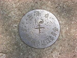 A larger pin