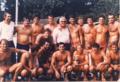 Zagreb 1980.Slavlje.png