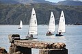 Zephyr yachts at Worser Bay Boating Club, Wellington NZ.jpg