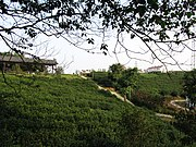 Zhenjiang Defensive Wall of Jin Dynasty 2011-10.JPG