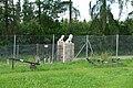 Zoo Tábor-Větrovy, zemědělské exponáty 01.jpg