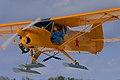 """""""Gadfly"""" in flight (5522413871).jpg"""