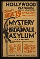 """Mystery of broadwalk asylum"" by C.E. Reynolds LCCN98507750.jpg"