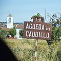 ÁguedaDelCaudillo2013 07.JPG