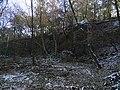 Ďáblický háj, přírodní památka Ládví (03).jpg