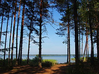 Belozersky District, Vologda Oblast District in Vologda Oblast, Russia