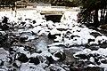 Горная река (2010.01.07) - panoramio.jpg