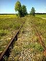 Забута залізниця - panoramio - EugeneLoza (1).jpg
