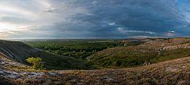 Крейдова флора, панорама.jpg