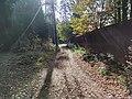 Лесные дорожки к Акуловскому поселку 03.jpg