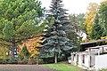 Лозанна - panoramio (3).jpg