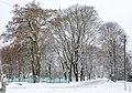 Новгород-Сіверський парк взимку.jpg