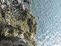 Нос Калиакра - panoramio (11).jpg