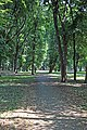 Парк Асеевых - 2.jpg