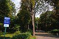 Парк імені Юрія Федьковича.jpg