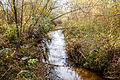 Річка Замишівка 02.jpg