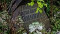 Смоленское Могила Зинин 2.jpg