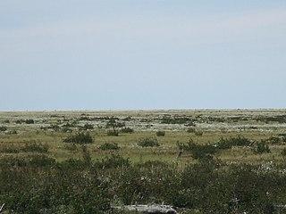 East Siberian Lowland