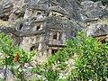 Цветущий гранат и некрополь VI-IV век до н.э. Мира. Демре. Турция. Июнь 2011 - panoramio.jpg