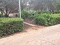 לאורך כביש 5 - מיכל מיכאלי מצלמת (8514601471).jpg
