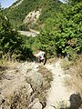 შ38, Georgia - panoramio (15).jpg