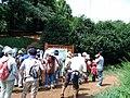 八国山緑地の案内板前 - panoramio.jpg