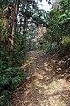 山景 - panoramio (19).jpg