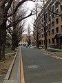 東京大学 本郷キャンパス - panoramio.jpg