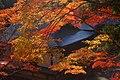 神護寺 京都市右京区 Jingoji 2013.11.21 - panoramio.jpg