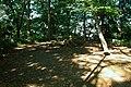 綱島公園 - panoramio (3).jpg