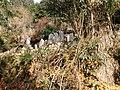 高山集落 - panoramio (14).jpg