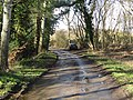 -2021-03-15 Heath Road, Crostwight, Norfolk (1).JPG