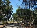 09733jfMaharlika Highway Good Shepherd Chapel San Ildefonso Bulacanfvf 07.JPG
