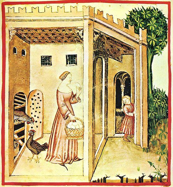 Uovo, Tacuinum Sanitatis (a medieval handbook on wellness).