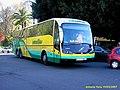 1013 Amarillos SAMAR - Flickr - antoniovera1.jpg